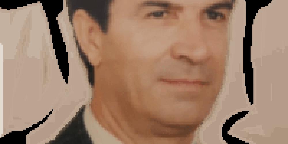 Manuel de Amorim Dias Lagoa