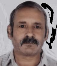 Agostinho Pereira Ribeiro – 71 Anos – Cabreiro
