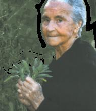 Rosa Cerqueira Pires – 101 Anos – Vale