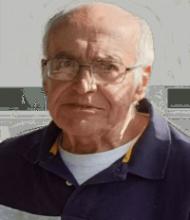 Domingos Emílio Matos de Sousa – 78 Anos – Vilela