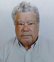 Manuel Sousa da Cunha